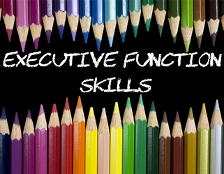 exec-function-skills-bundle